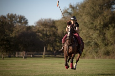 Barnabas and Horses-3