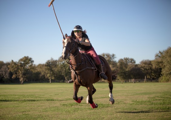 Barnabas and Horses-4